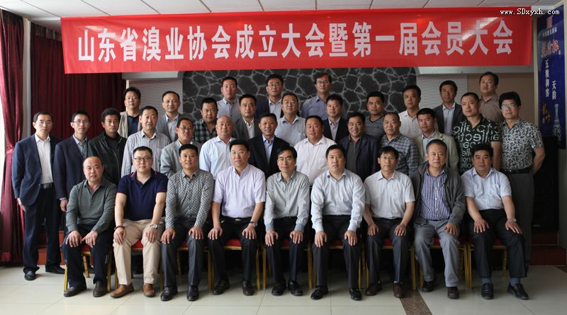 山东省溴业协会在昌邑成立
