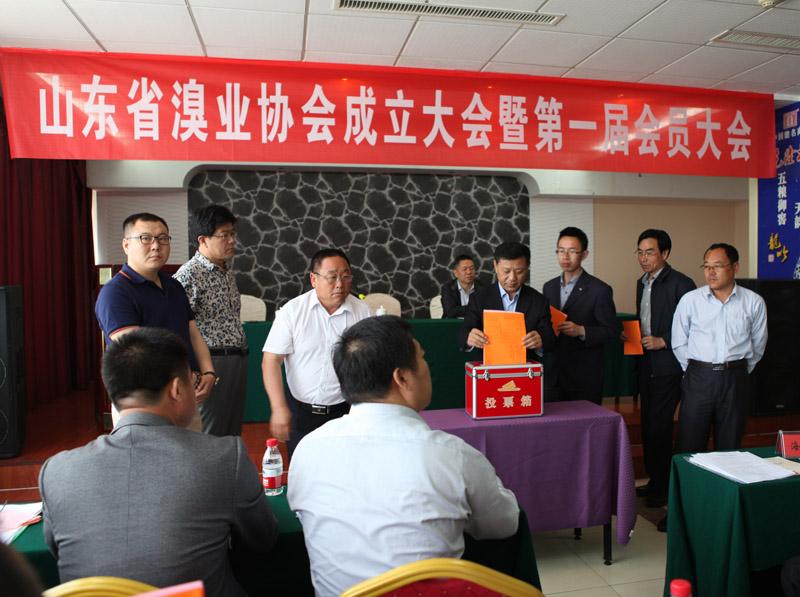 山东省制溴业协会 第一次会员大会选举办法